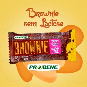 Um brownie que é uma delícia, não tem lactose e ainda é nutritivo!